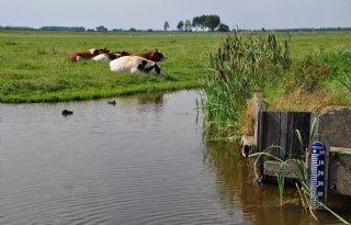 Hollandse+Delta+verlaagt+waterpeil