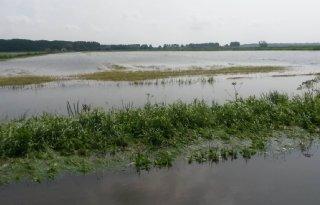 Boeren+Kockengen+claimen+schade