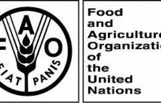 FAO%3A+landbouw+Gaza+lang+schade+conflict