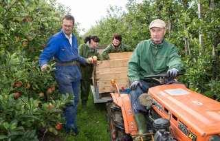 EU-regeling groenten en fruit verlengd