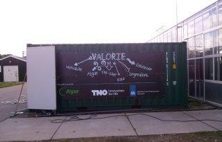Eerste algenraffinagefabriek opent deuren
