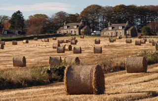 'Afscheiding goed voor Schotse boer'