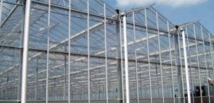 Gelderland steunt verplaatsing tuinders