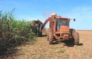 Meer suiker voor export uit Brazilië