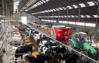 Eerste Kamer eist aanpassing melkveewet