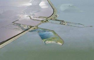Afsluitdijk+open+voor+vis