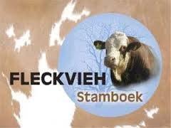 Verkiezing+Fleckviehkoe+van+%27t+Jaar