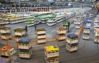 Juni%2Domzet+FloraHolland+in+de+lift