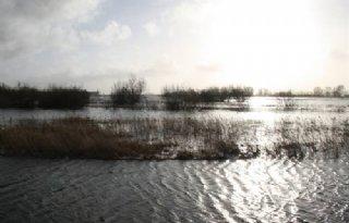 Geen+problemen+hoogwater+Groot+Salland