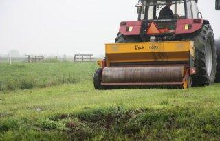 Ruwbeemd rukt op in grasland