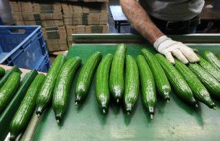 Engelse+import+groente+en+fruit+naar+record