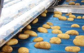 Vooral+overzee+meer+aardappelexport