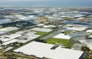 Brief+milieuorganisaties+over+glastuinbouw