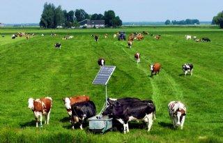 Fosfaatreferentie+niet+verhandelbaar