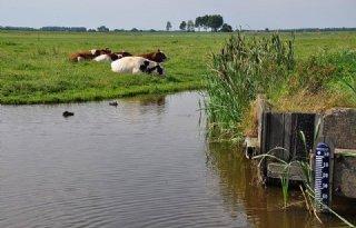 Hollandse+Delta+naar+zomerpeil