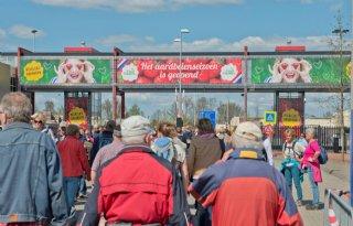 Drukke opening Hollands aardbeienseizoen