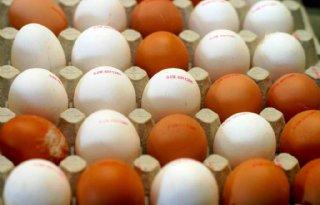 Nederlandse+eieren+mogelijk+naar+de+VS