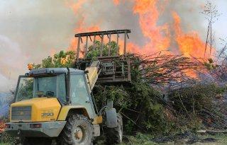Multinationals verdacht van inkoop foute palmolie