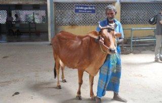 Nederland helpt Indiase boeren