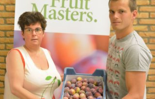 Fruitmasters veilt eerste pruimen