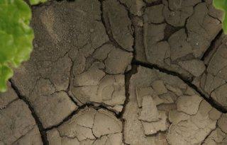 Aangepast peilbeheer door droogte