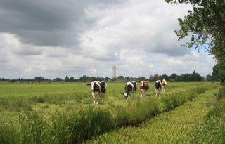 Zegveldse+polders+rijk+aan+natuur