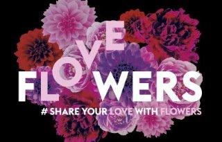 Sierteelt+met+bloemenboot+op+Gay+Pride