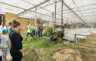 Serrestal geiten populair tijdens FF Boeren