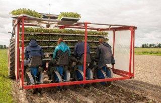 PvdD+Groningen+wil+biologische+pachtgronden
