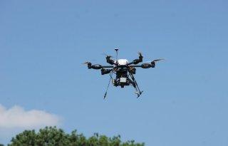 Bloembollentelers geïnteresseerd in drones