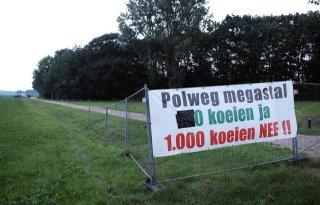 Gelderland+kan+stal+Koolen+niet+weigeren