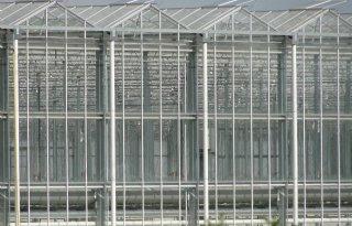 Glastuinders+investeren+in+zonnepanelen