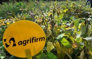 Agrifirm+betaalt+bijna+530+euro+per+ton+sojabonen