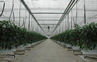 LTO+Glaskracht%3A+CO2%2Dreductie+spectaculair