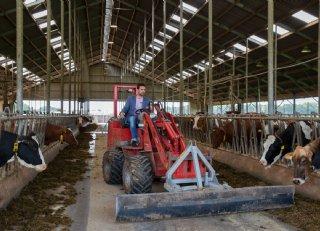 Leden Milk Trading Company tevreden met 2 cent boven op melkprijs