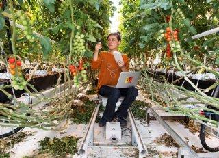 Internationale tuinbouw draait om samenwerking