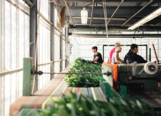 Gros arbeidsmigranten positief over komst naar Nederland