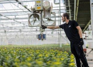 Santinikwekerij Van Schie benut alle voordelen van milieuregistratie