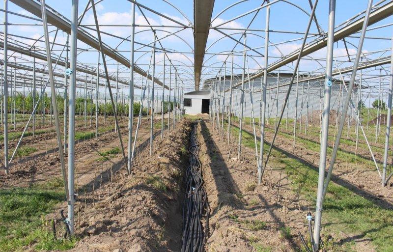 De aanleg van het irrigatiesysteem is nog in volle gang.