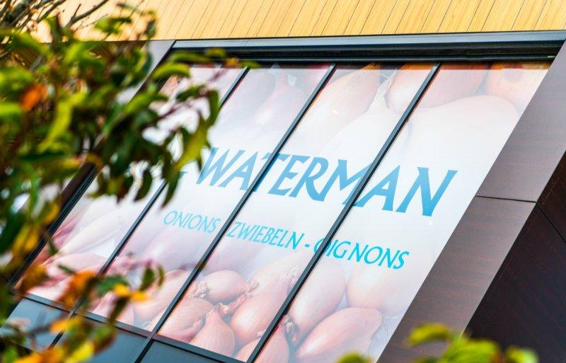 waterman onions