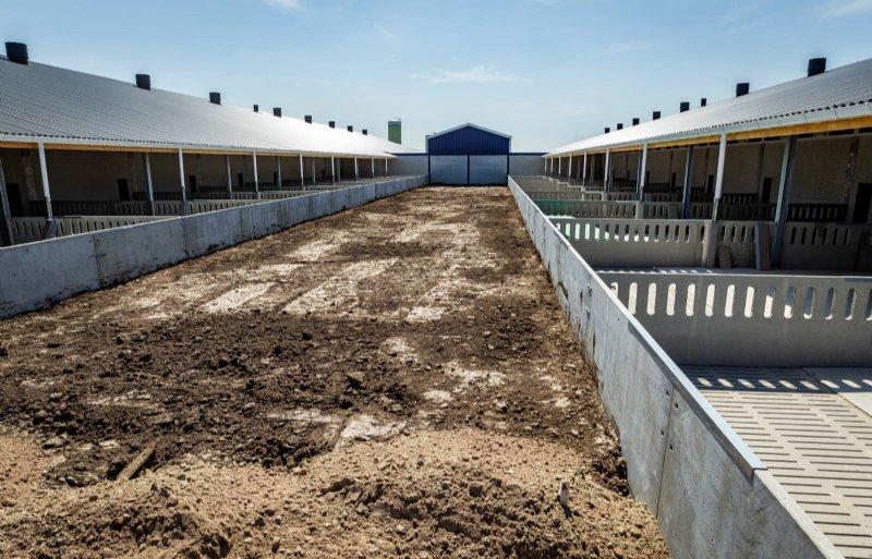 Een beeld van de nieuwe stallen bij de familie Ten Have in Beerta. De stallen zijn bijna klaar.