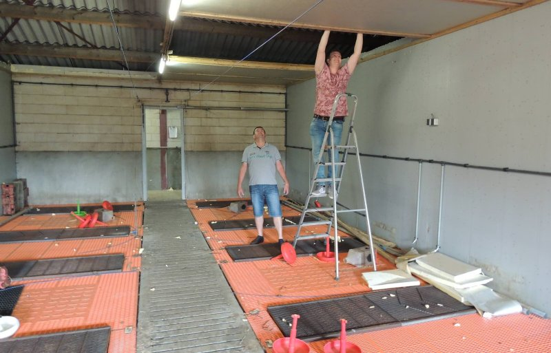 Geert (links) en Freek van Nuland uit Heeswijk-Dinther ontmantelen een van de stallen.