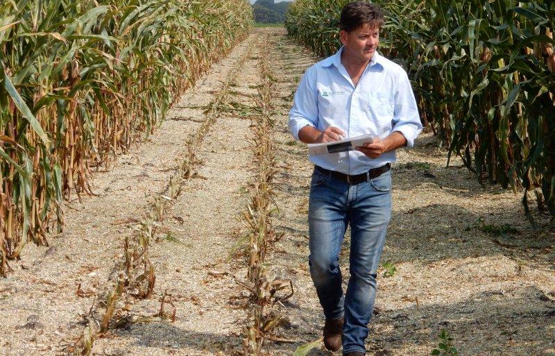 Jos Groten van Wageningen Plant Research inspecteert proefveld
