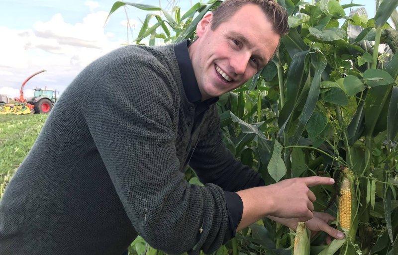 Maisspecialist Laurens van Run toont de stokslabonen in de mais.