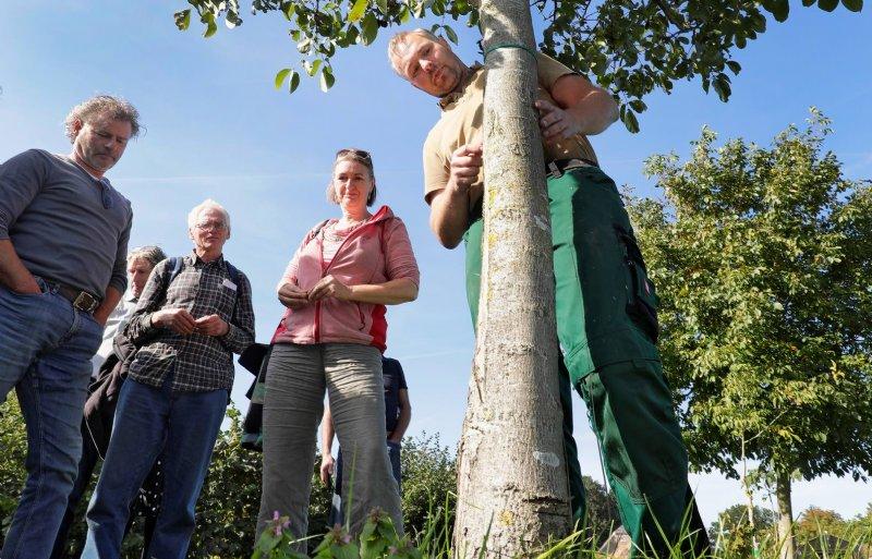 De Vries kweekt zijn jonge bomen zelf.