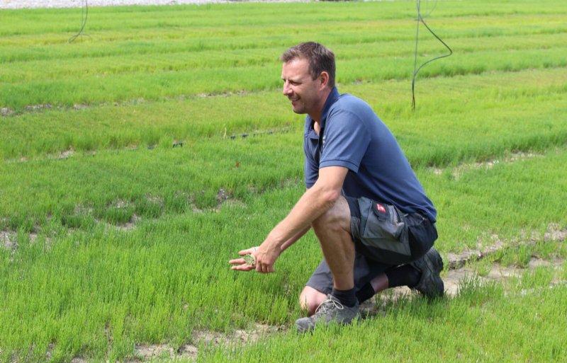 Akkerbouwer Hubrecht Janse uit het Zeeuwse Wolphaartsdijk teelt zeekraal op zoute kleigrond.