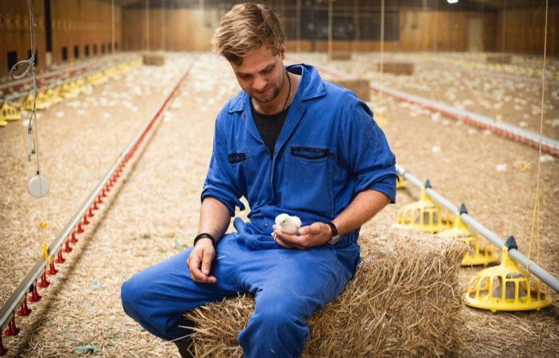 Johan Leenders mag aan het begin van de werkdag graag even genieten van zijn kippen.