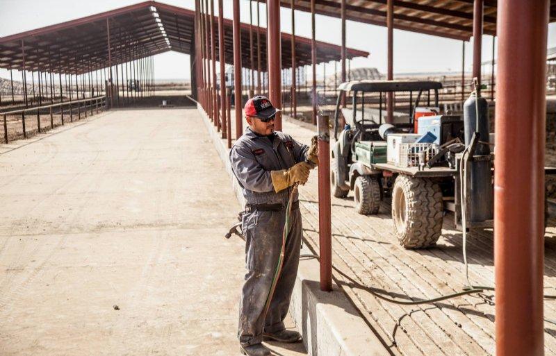 Mexicaanse medewerkers hielpen mee met de bouw van de melkveestal.