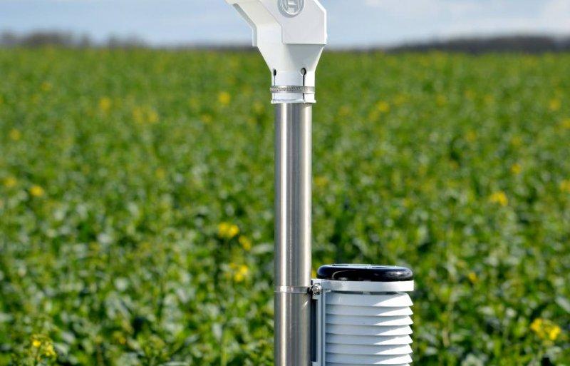 Bosch werkt samen met start-up Hiphen aan een weerstation dat dagelijks foto's maakt van het gewas.