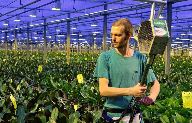 Stolk Orchids gebruikt biologische gewasbescherming.